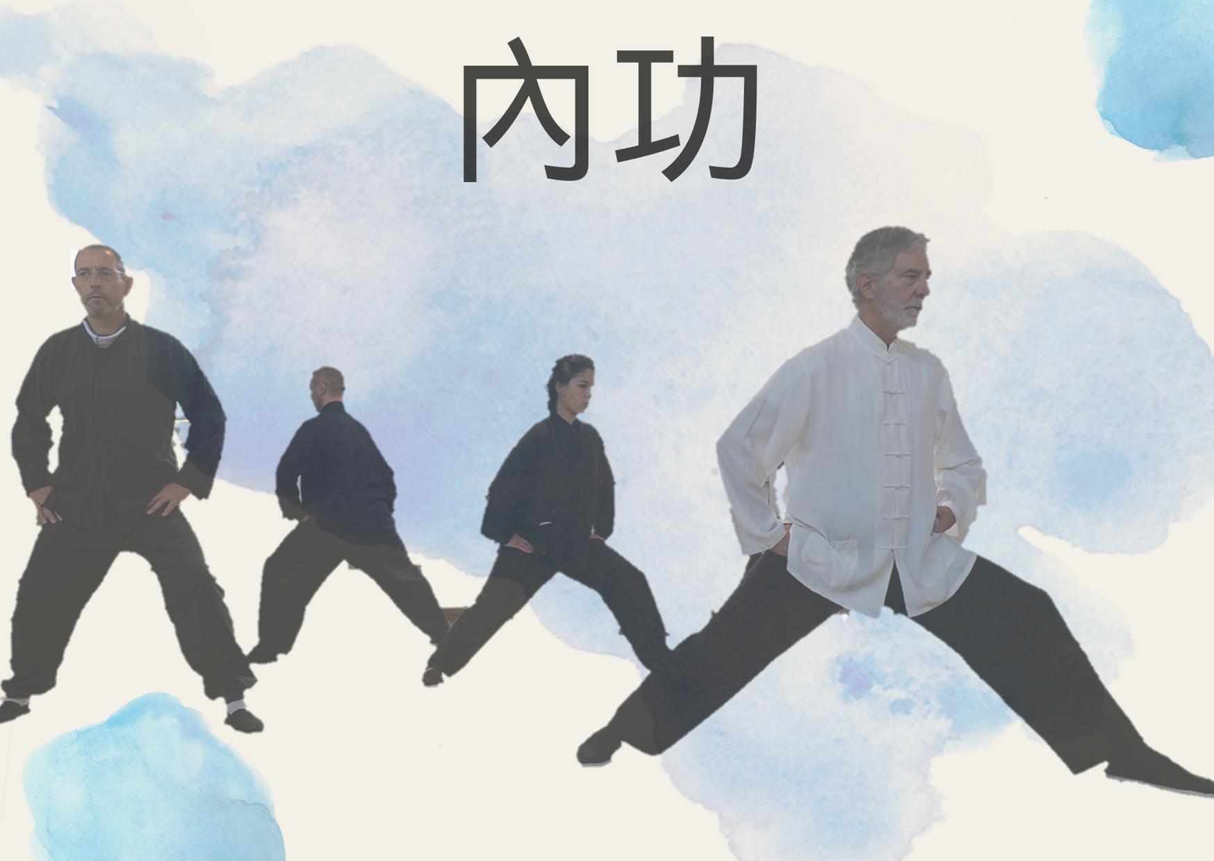 """Nèi Gōng  內功, """"il movimento nella quiete"""""""